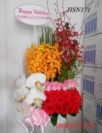 hoa hsn171